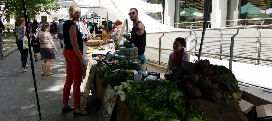 Tranquil Tuesdays at South Kensington Farmers Market