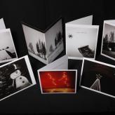 Daniela Sbrisny Photography